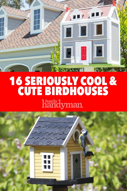 16 Seriously Cool & Cute Birdhouses Bird houses, Bird