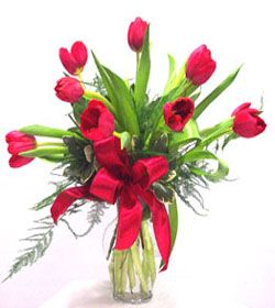 10 Red Tulip - A Pinay gift is the most reputed and trusted source to buy