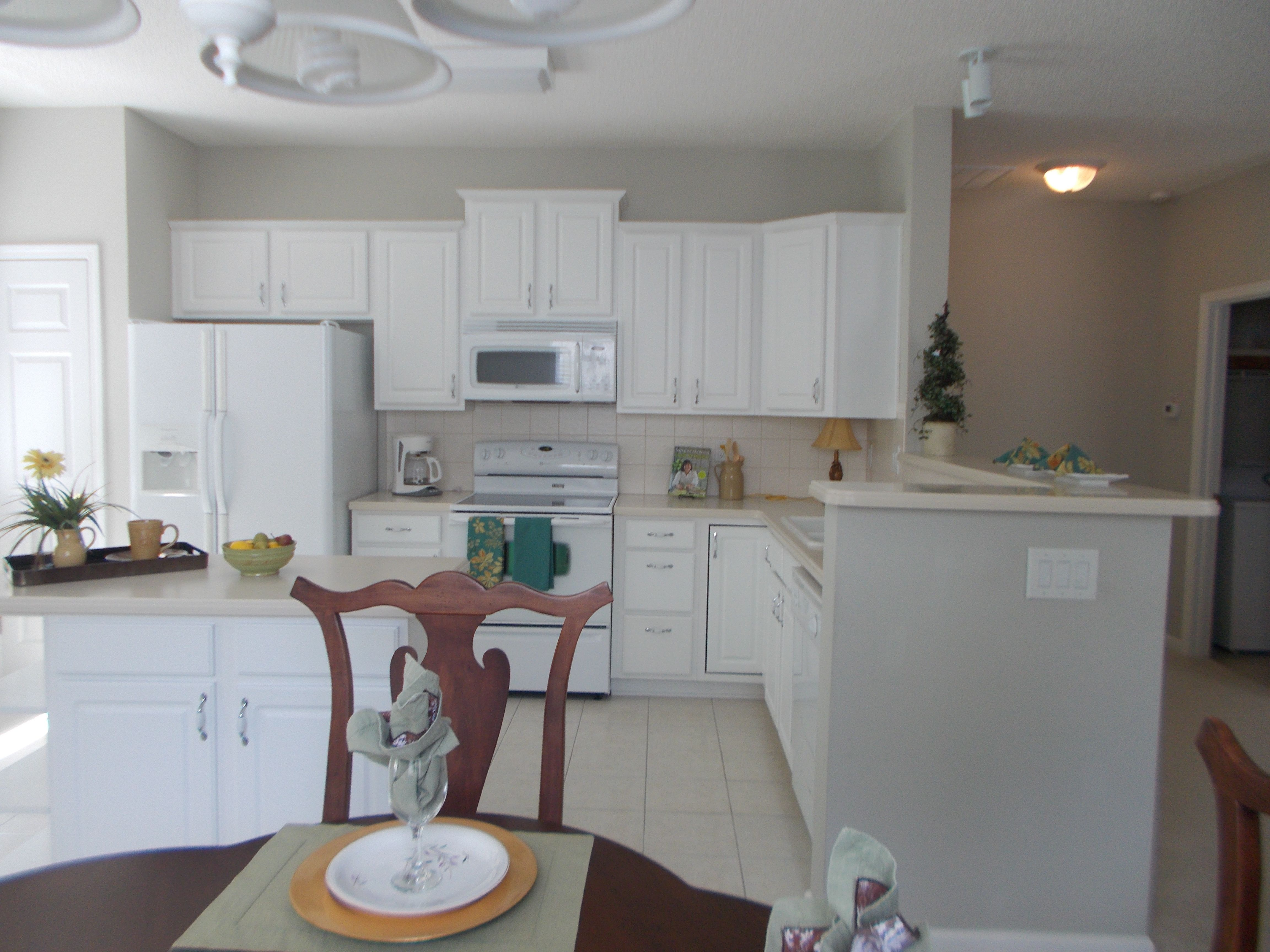 Beautiful White Kitchen Pictures