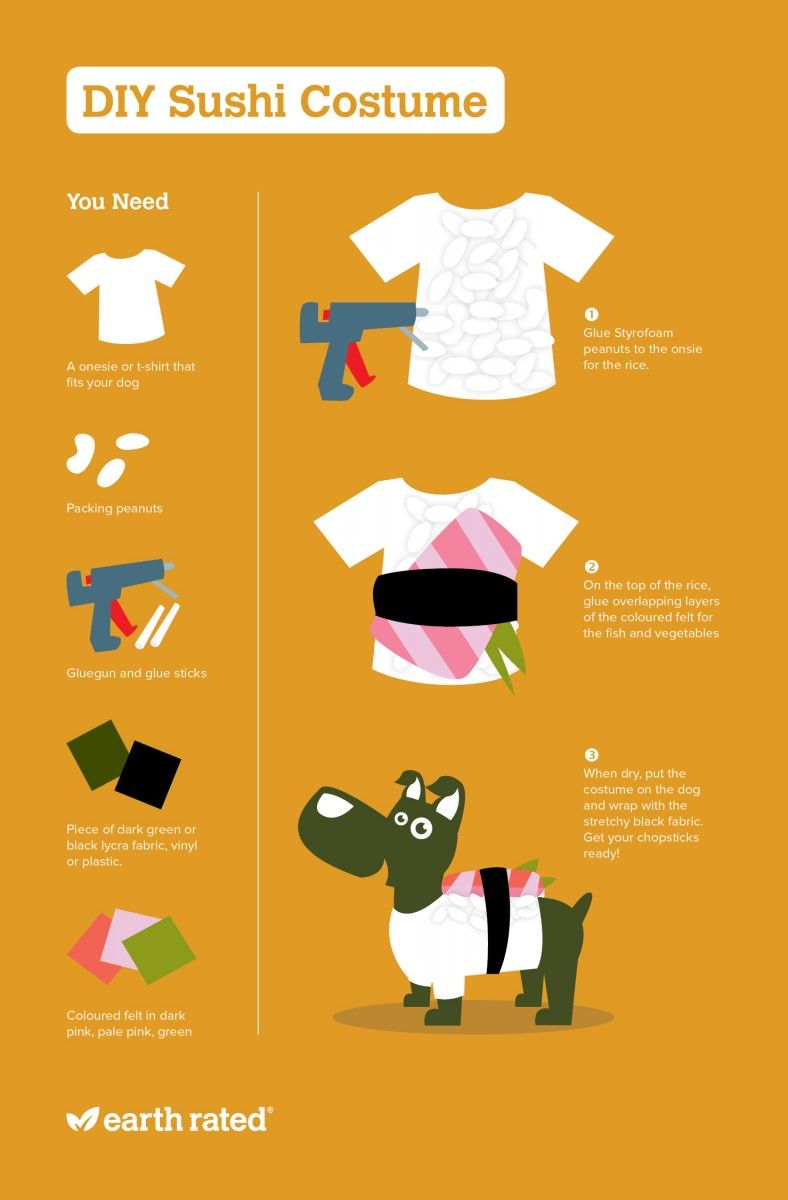 Diy do it yourself dog sushi costume pinteres are you looking to get a head start on your dogs halloween costume check out this diy dog sushi costume solutioingenieria Choice Image