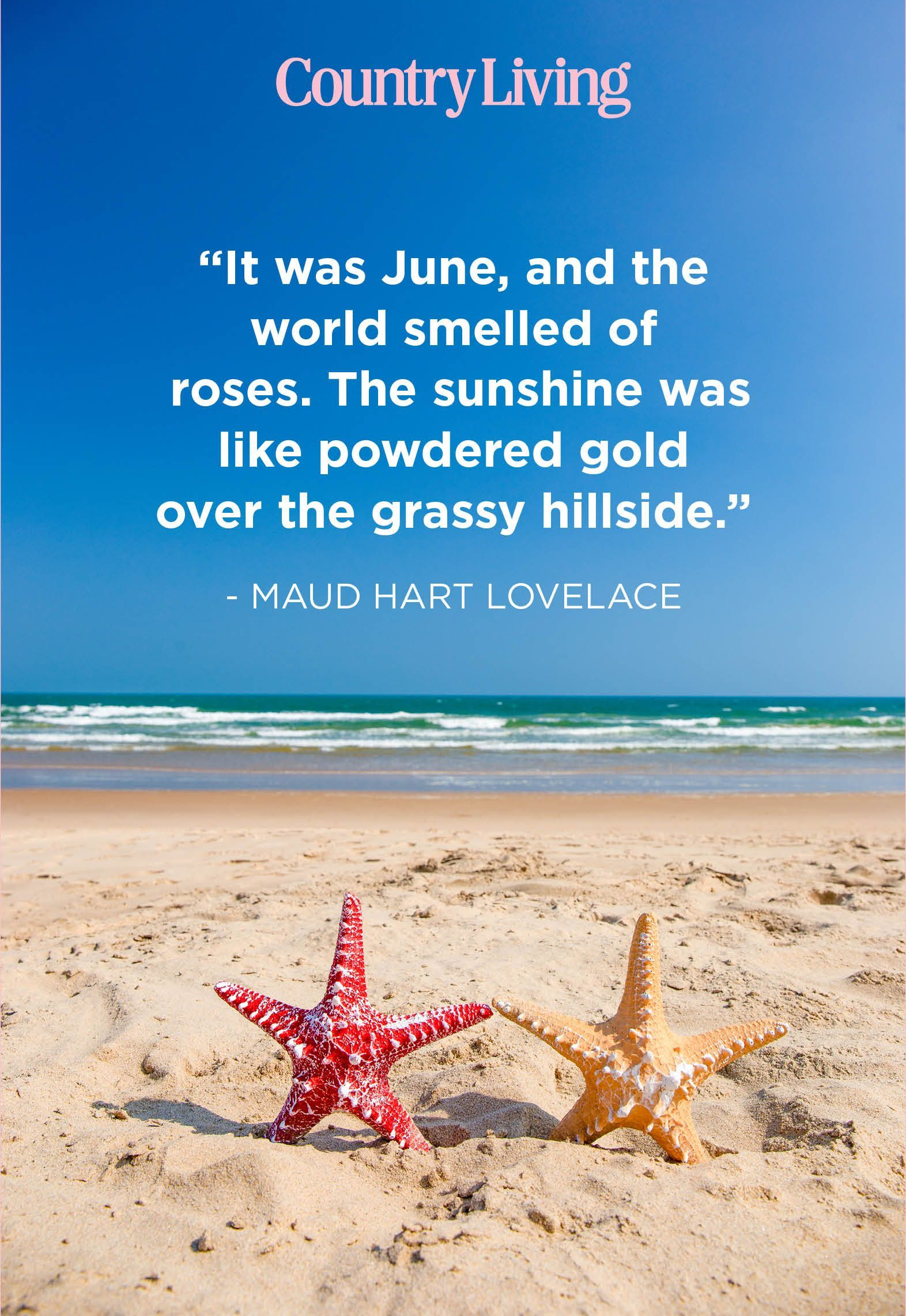 Absolutely Beautiful Quotes About Summer In 2020 Summer Quotes Beautiful Quotes Most Beautiful Words