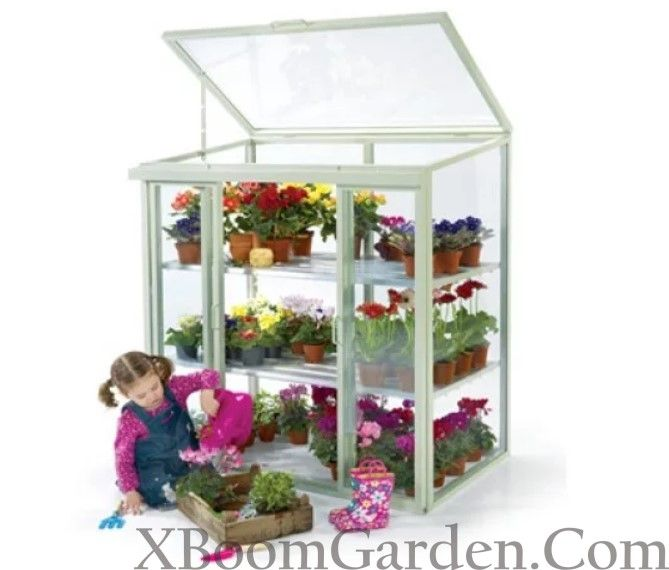 Small Greenhouse For Balcony – Successful Growing Tips For 400 x 300