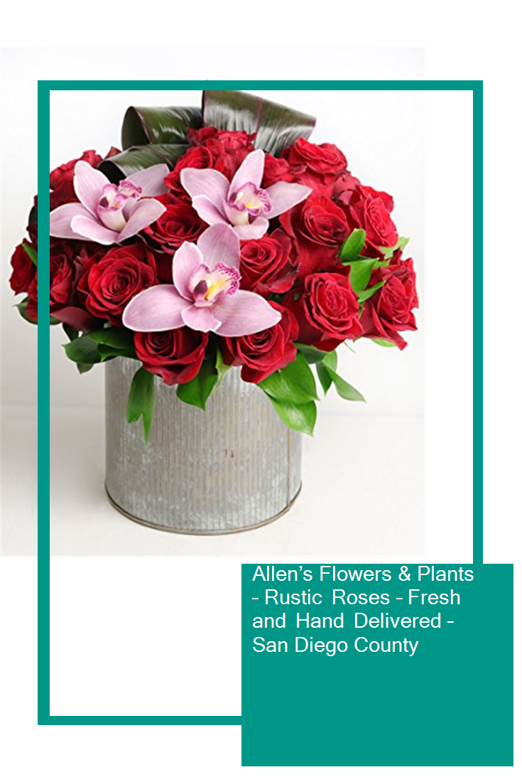 Allen's Flowers & Plants Rustic Roses Fresh and Hand