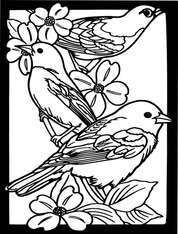 Favorite Birds Stained Glass Coloring