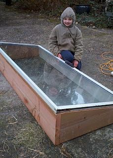 Cold frame from an old glass door  | The Soil Toil | Cold frame