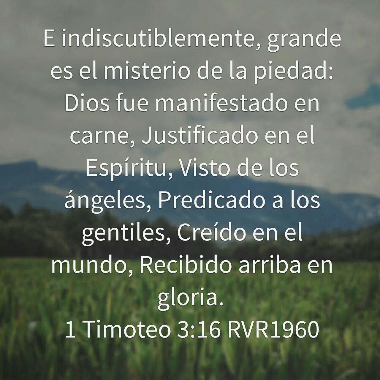 Pin De Marina Pereira En Dios Palabra De Vida Citas De La Biblia Textos Biblicos