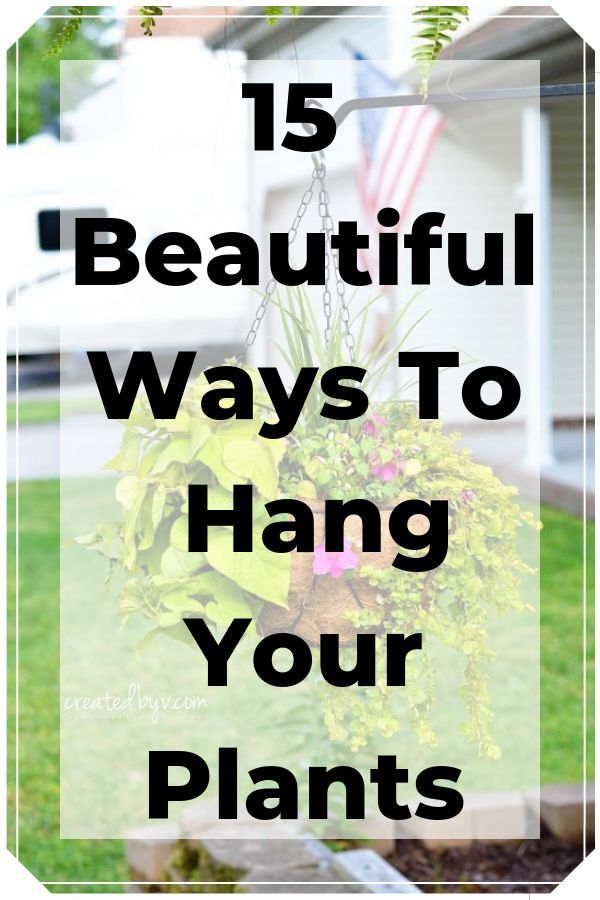 15 Beautiful DIY Ways To Hang Your Plants -   16 plants Hanging crafts ideas