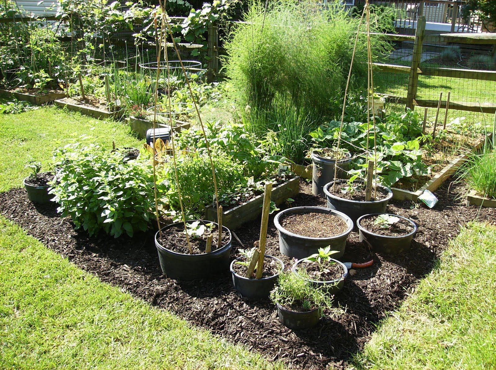 Gardening Idea Vegetable Container Garden - Get great ideas for ...