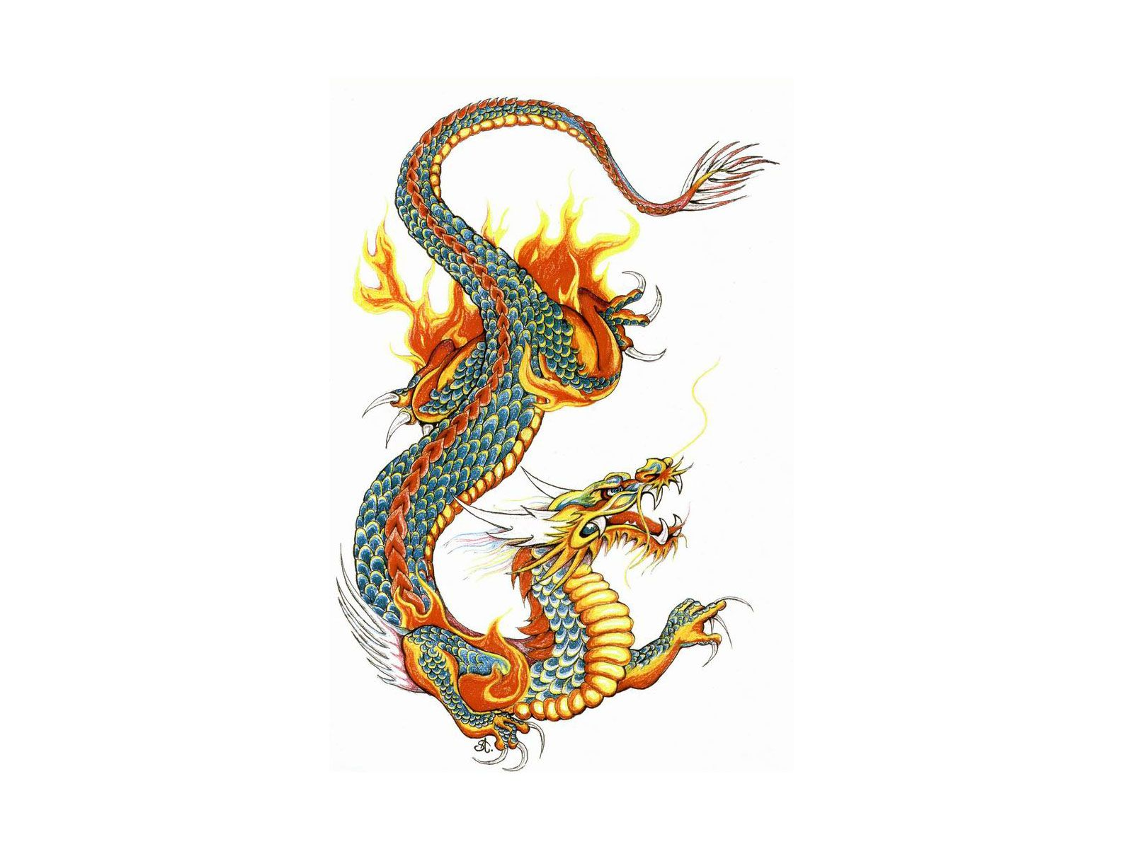 Japanese Dragon Tattoo Design Dragon Tattoo Pictures Free Clipart Best Asian Dragon Tattoo Dragon Illustration Asian Dragon