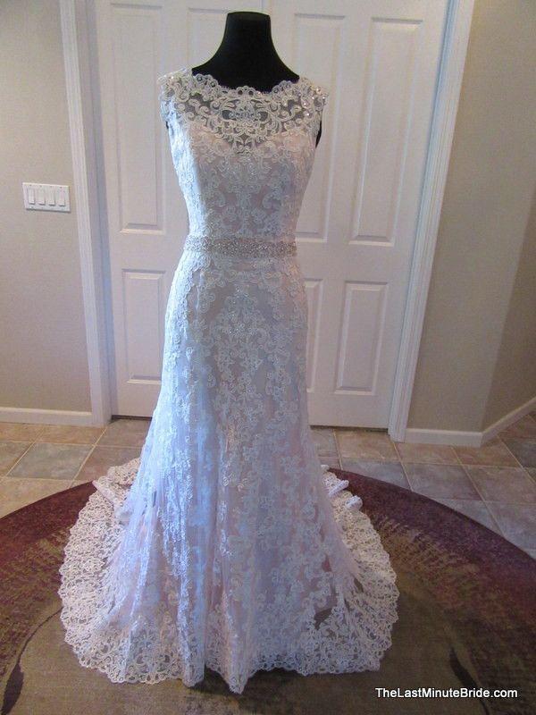wedding wedding fun wedding wishes wedding dreams wedding gowns