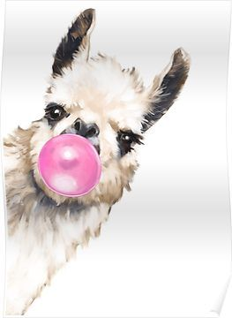 Sneaky Llama With Bubble Gum Poster By Bignosework Dessin De