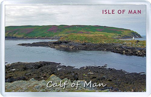 $3.29 - Acrylic Fridge Magnet: Isle of Man. Calf Of Man