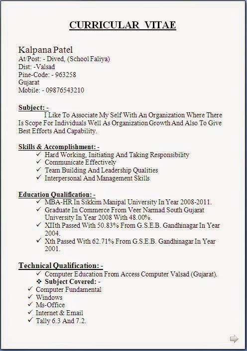 Excellent Resumes Examples Beautiful Excellent Professional
