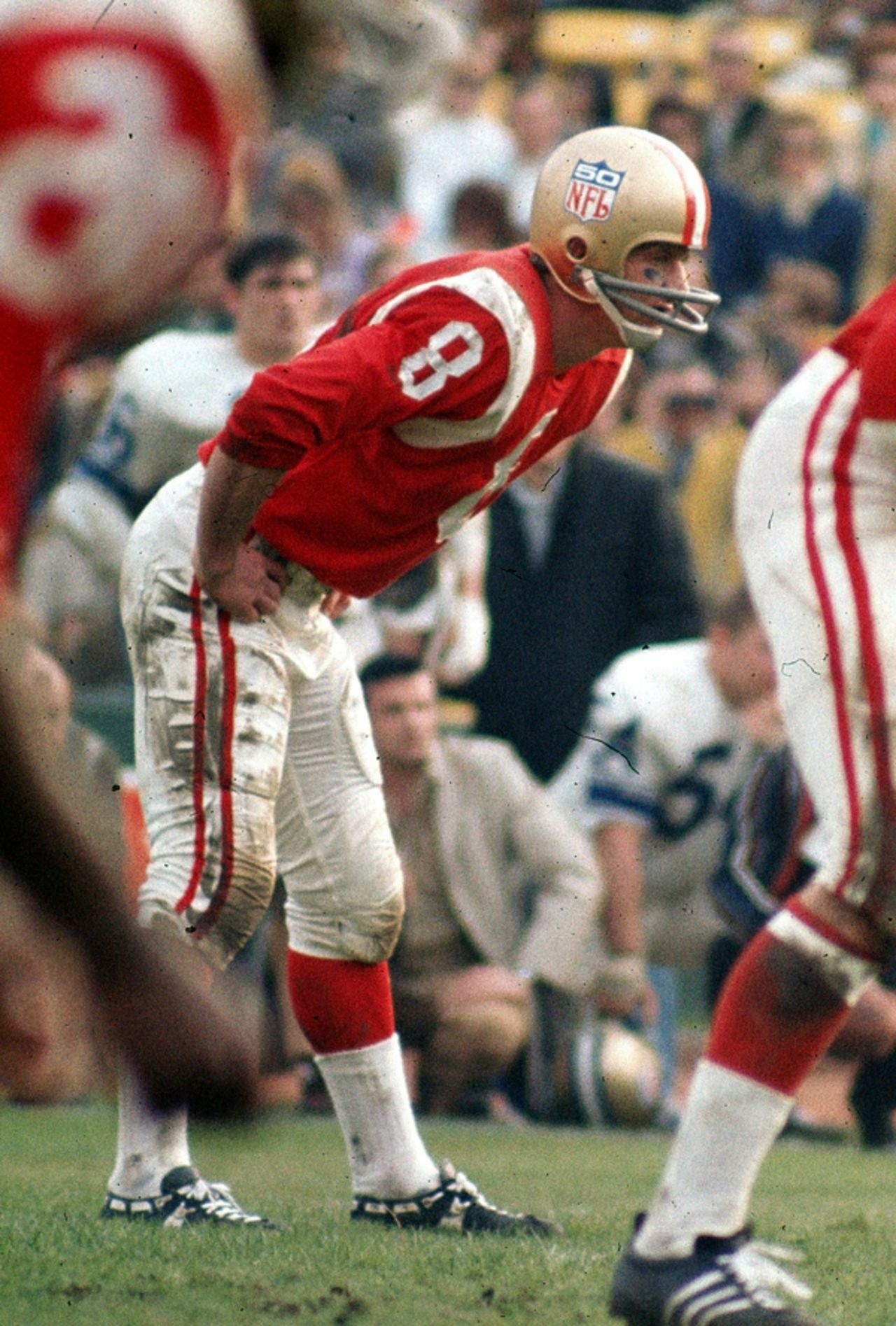 Pro Bowl 1969, Larry Wilson, StL Cardinals Football and
