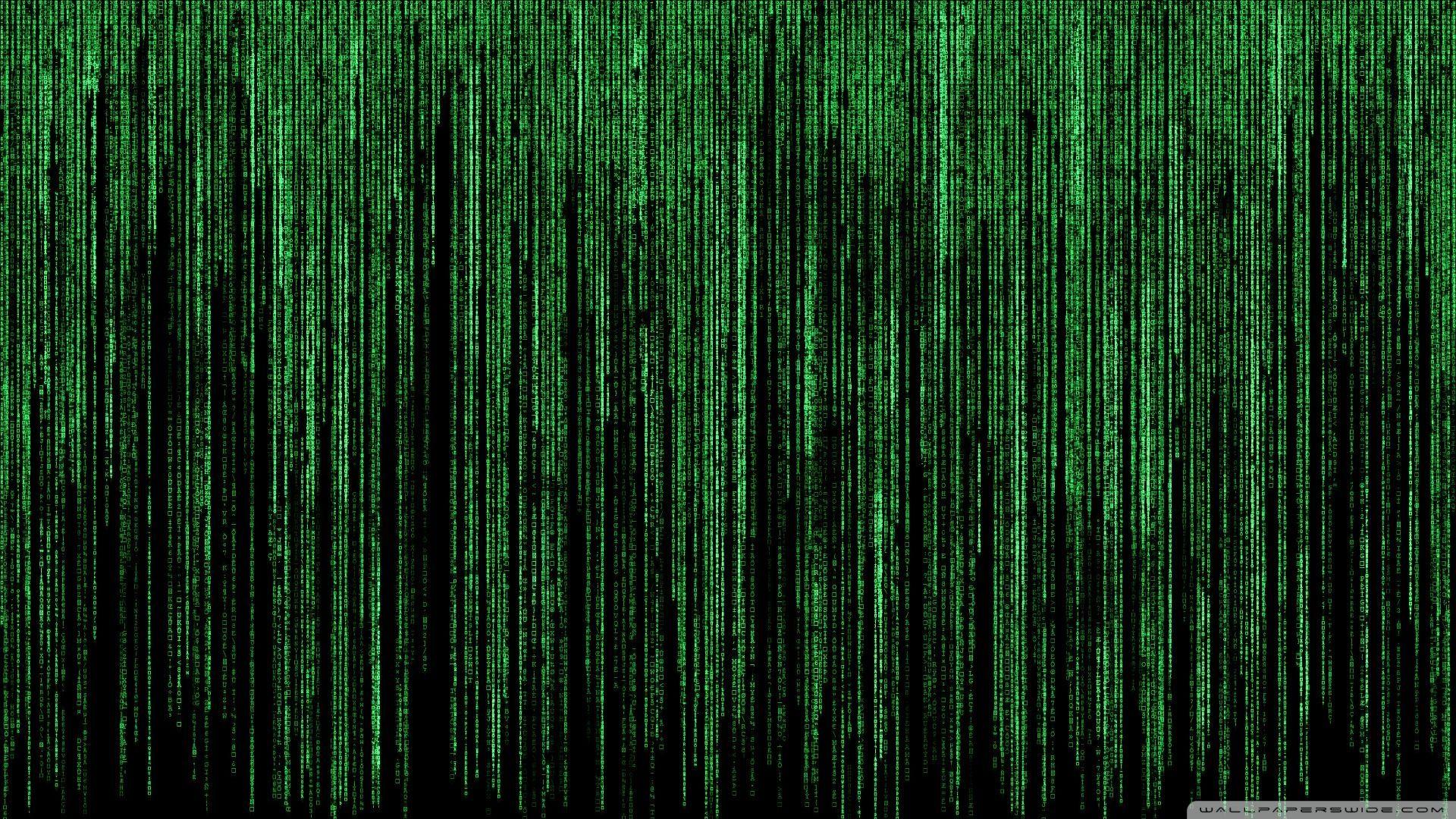 4k Matrix Wallpapers Top Free 4k Matrix Backgrounds Wallpaperaccess In 2020 Desktop Wallpapers Backgrounds Hd Wallpaper Hd Desktop