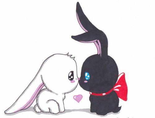 Cute Anime Rabbit Cute Anime Bunny Drawi...