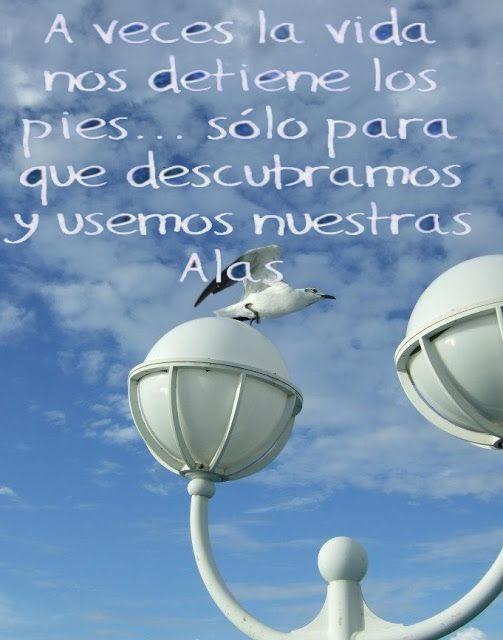 Ana Zulay Delgado: A veces la vida...
