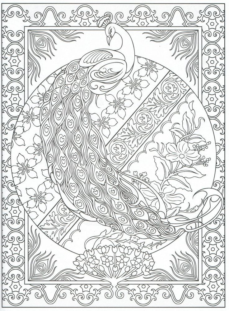 Peacocks Art Coloring on Pinterest | Peacocks, Coloring Pages | Art ...