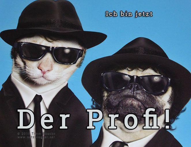 Ich bin jetzt Profi!