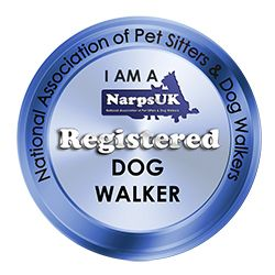 Have over 20 years of dog training experience - http://www.dog-ramblers.co.uk/blog/  #expertdogtrainer