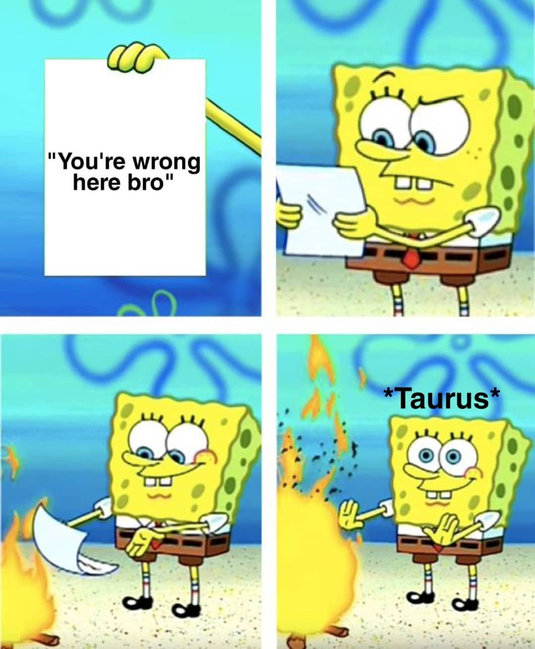 Tag A Taurus In The Comments Bellow Lmao Horoscope Horoscopes Horoscopememes Horoscopepost Horoscopefeeds Zodiacsign Funny Memes Spongebob Memes Memes