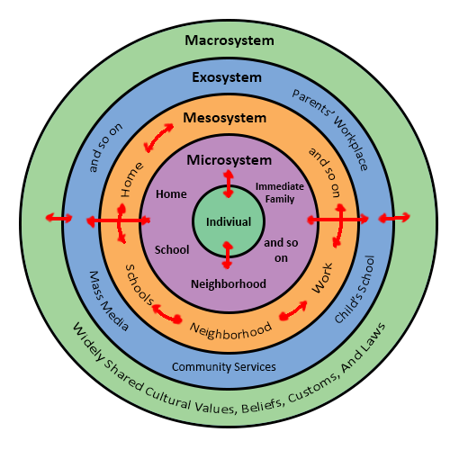 A Simple Diagram To Explain The Relationship Between The Microsystem Mesosystem Exosystem And M Ecological Systems Theory Systems Theory Social Work Theories