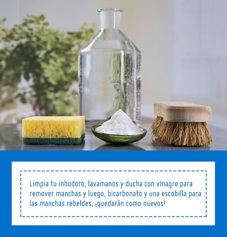 Limpiar Azulejos Bano Vinagre 4635041c70e4e9f99575a5 Como Quitar El