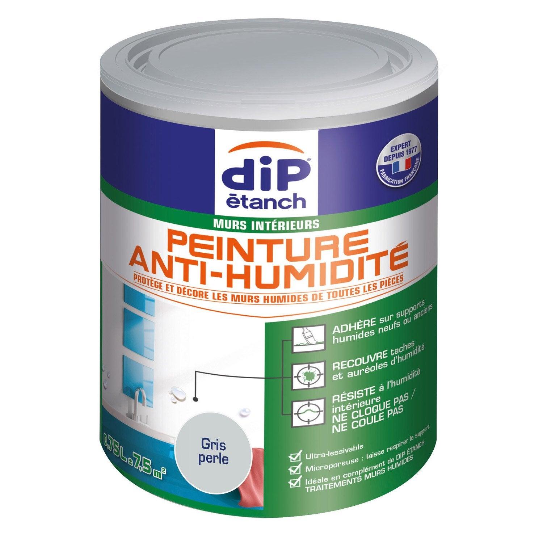 Peinture Antihumidite Dip Gris Perle 0 75 L Gris Galet Peinture Anti Humidite Et Gris Perle