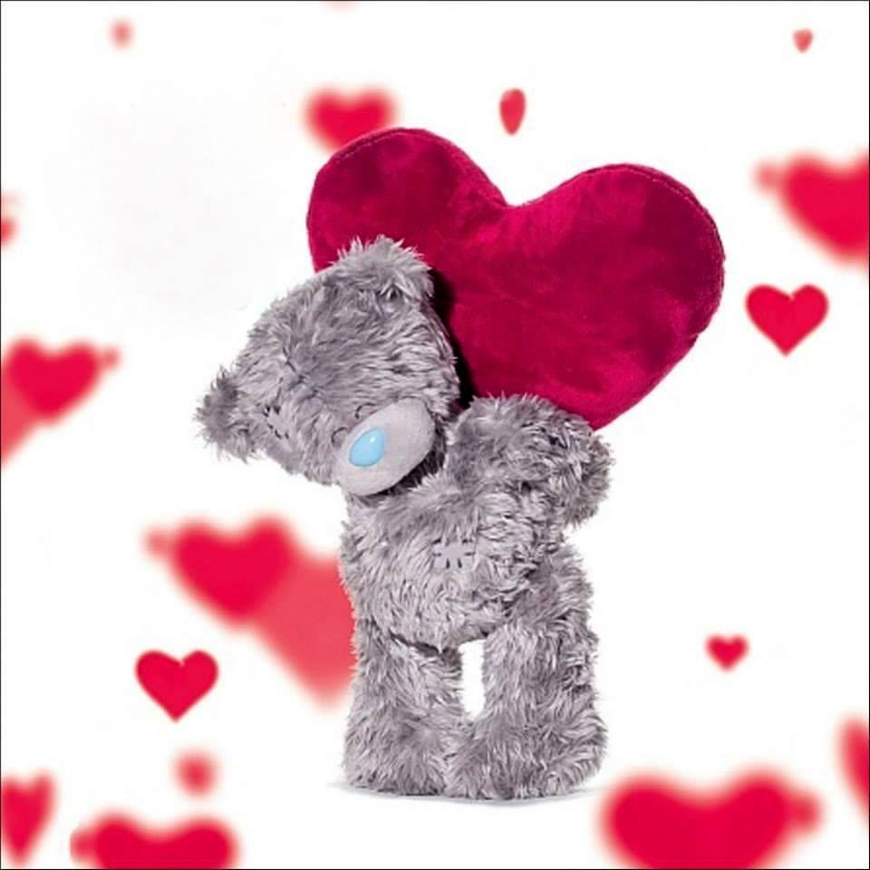 всемирную картинки мишек тедди на день святого валентина хочется вам