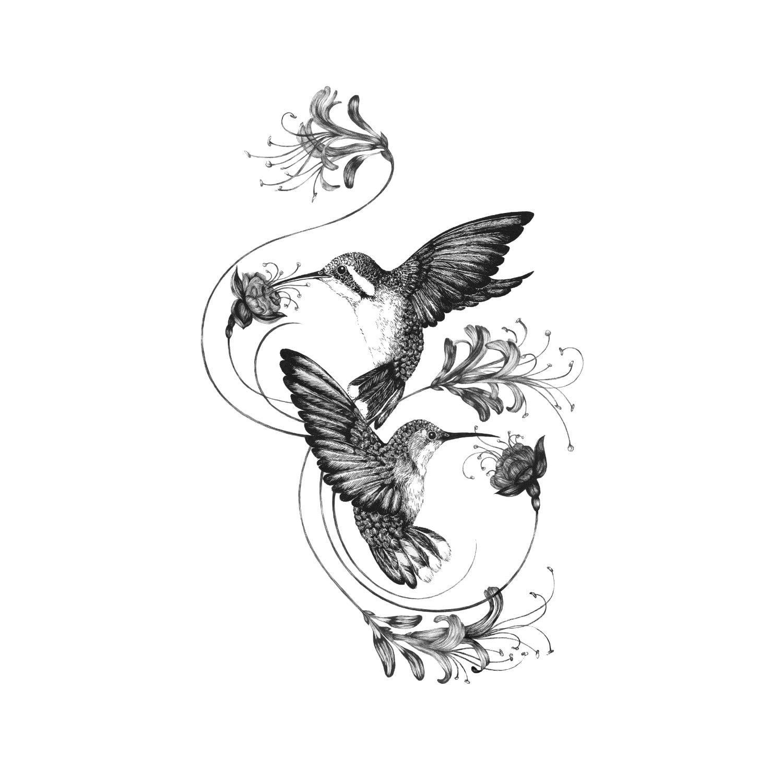 Emily Carter Hummingbirds Honeysuckle Giclee Print A4 Hummingbird Tattoo Vine Tattoos Hummingbird Flower Tattoos