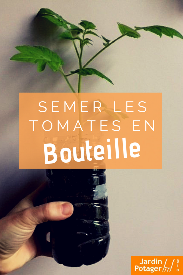 semis et plantation des tomates en bouteille jardins. Black Bedroom Furniture Sets. Home Design Ideas