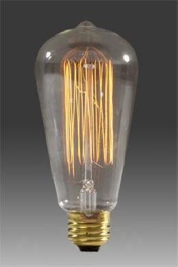 25 Watt Edison Light Bulb Edison Light Bulbs Cage Light Filament Bulb Lighting