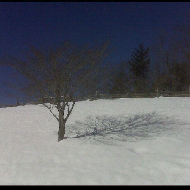 Winter - PSt