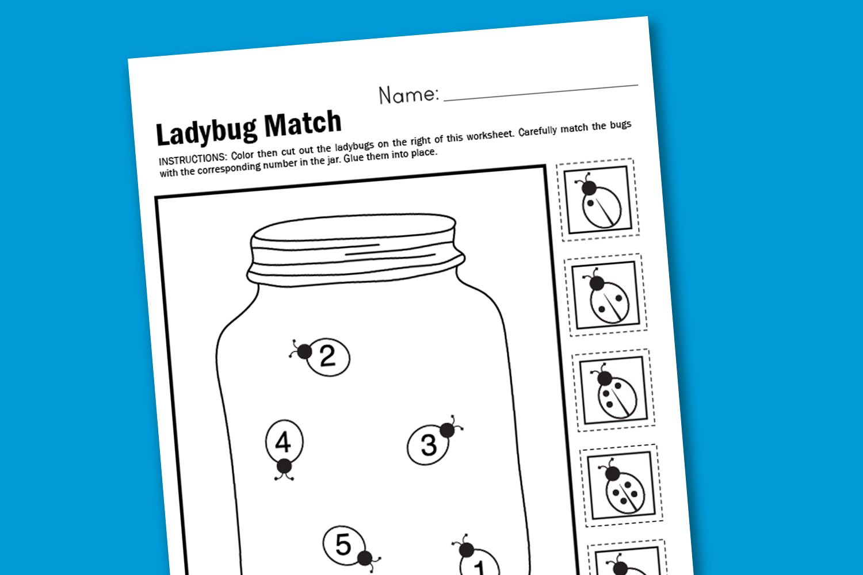 worksheet Ladybug Counting Worksheet worksheet ladybug match from super mom moments insects mom