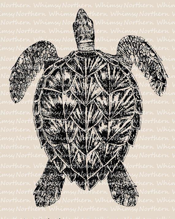 Sea Turtle Clip Art Beach Clip Art Turtle Illustration Etsy