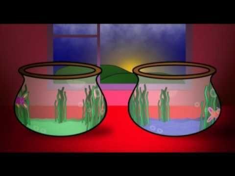 Video animation: Carnival of the Animals: Aquarium ...