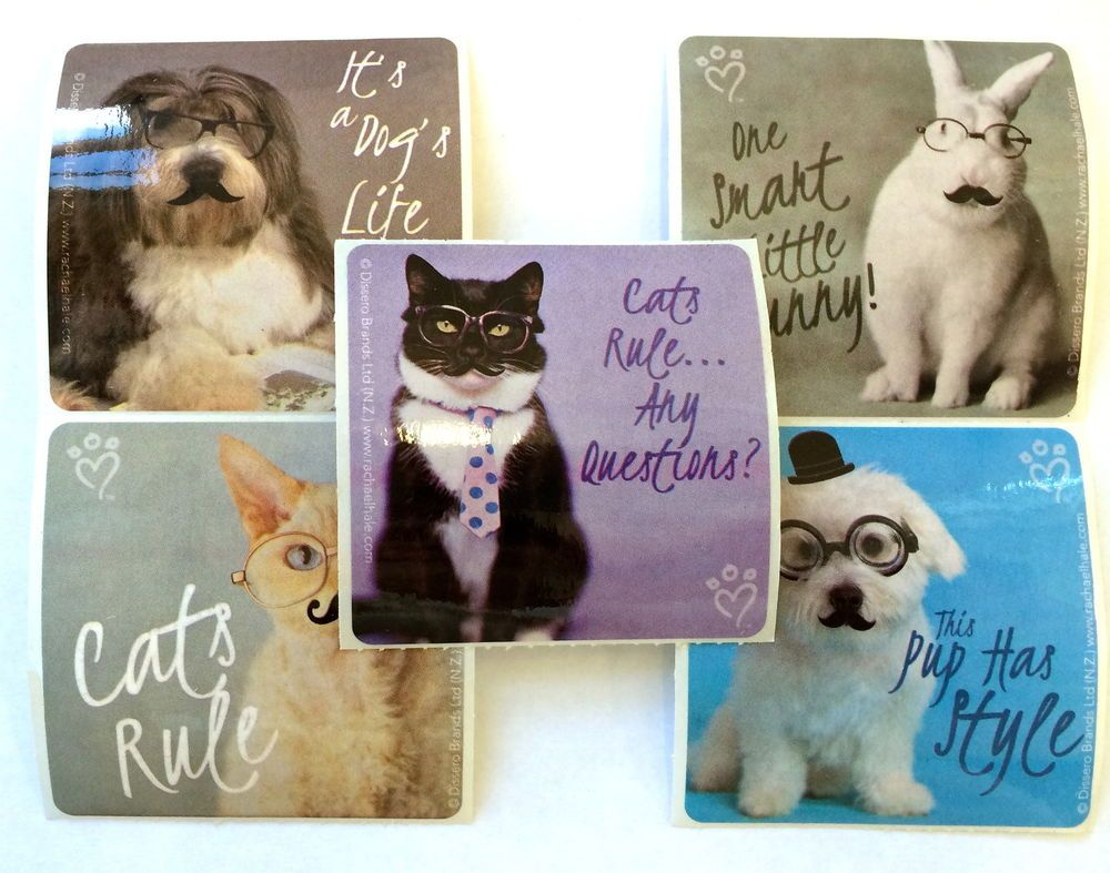 15 Rachael Hale Animals Mustache Kitty Bunny Puppy Stickers Party Favors Dog Cat Cats Dog Cat Puppies