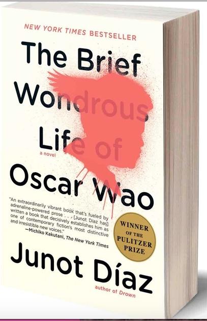 essay on the brief wondrous life of oscar wao