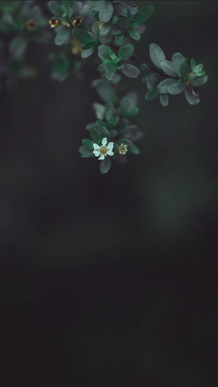 #Природа