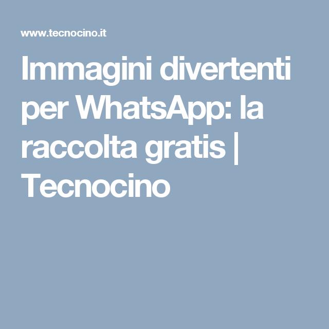 Immagini Divertenti Per Whatsapp La Raccolta Gratis