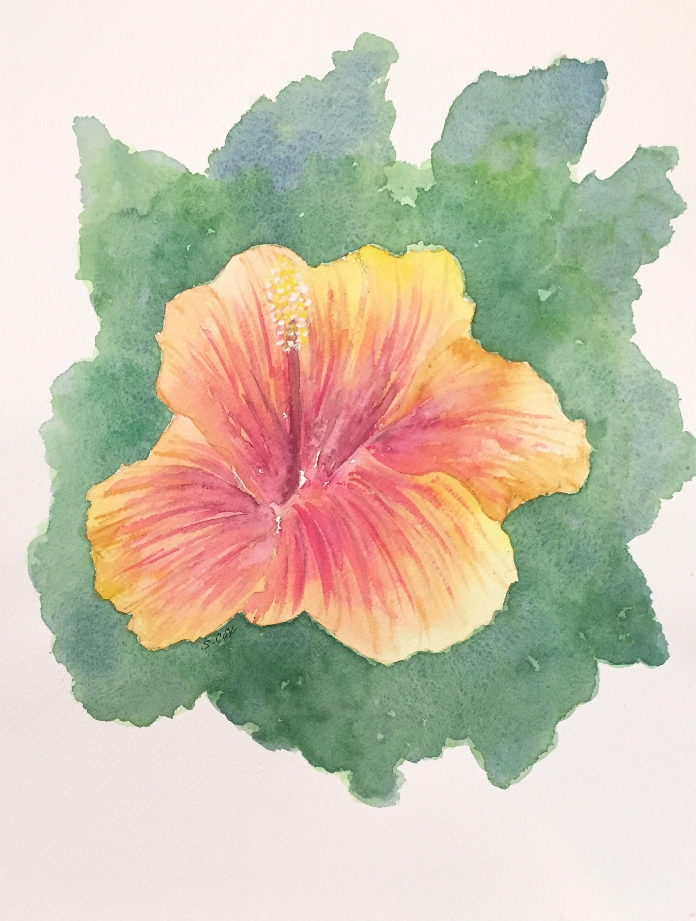 Hibiscus watercolor painting botanical flower original floral hibiscus watercolor painting botanical flower original floral tropical painting kitchen art coastal decor orange and gold wall art izmirmasajfo