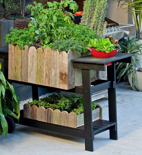 24 Fantastic Backyard Vegetable Garden Ideas: How To Make A Barbecue Planter: Transform An Old Barbecue
