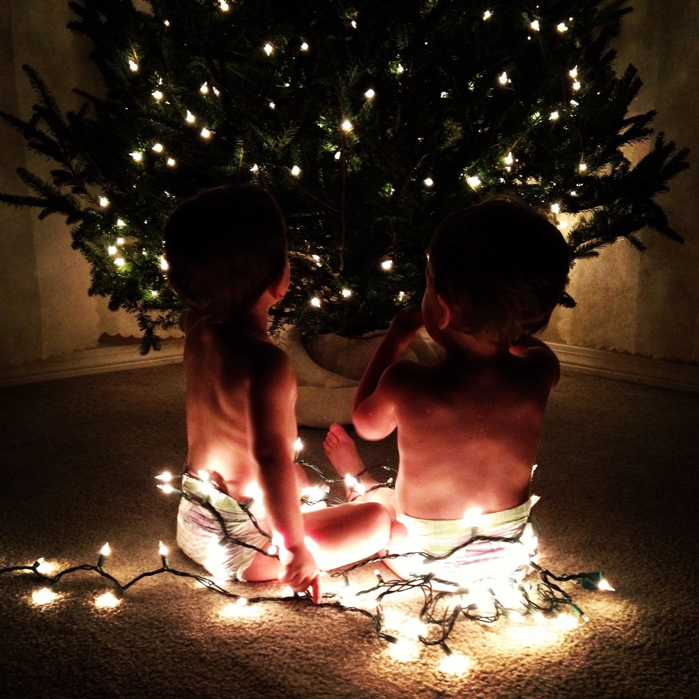 My Twins wrapped in Christmas lights