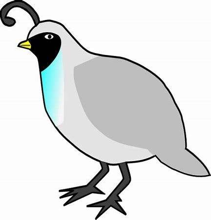 image result for quail outline clip art bird art pinterest rh pinterest com quail clip art vector quail clipart black and white