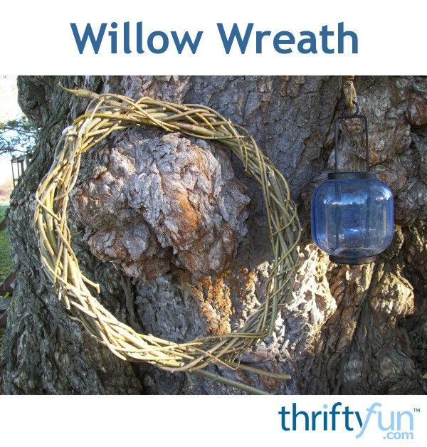 Photo of Willow Wreath