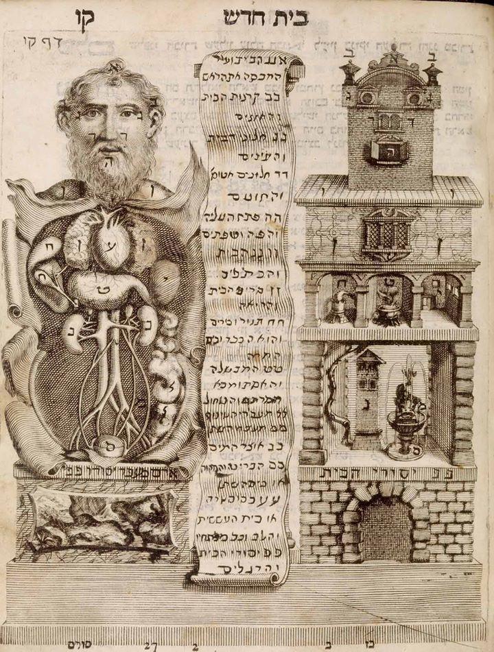 Ilustración comparando anatomía humana con el interior de una casa ...
