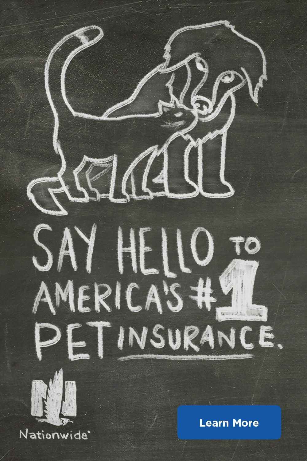 Use Any Vet Anywhere With Nationwide Pet Insurance Pet Insurance Reviews Pet Insurance Pets