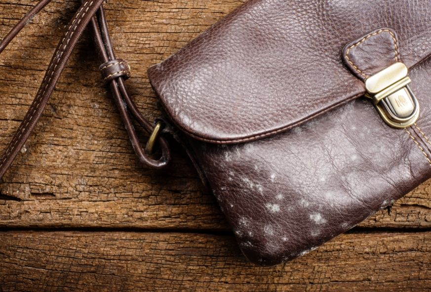 How to remove mold from your leather bag Borse in pelle
