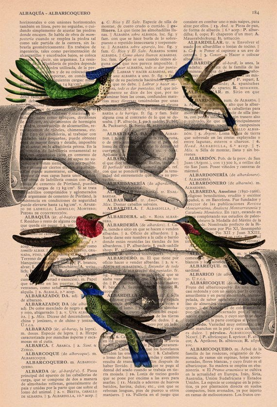 Upcycled Book Print Hummingbirds Print On Vintage Book