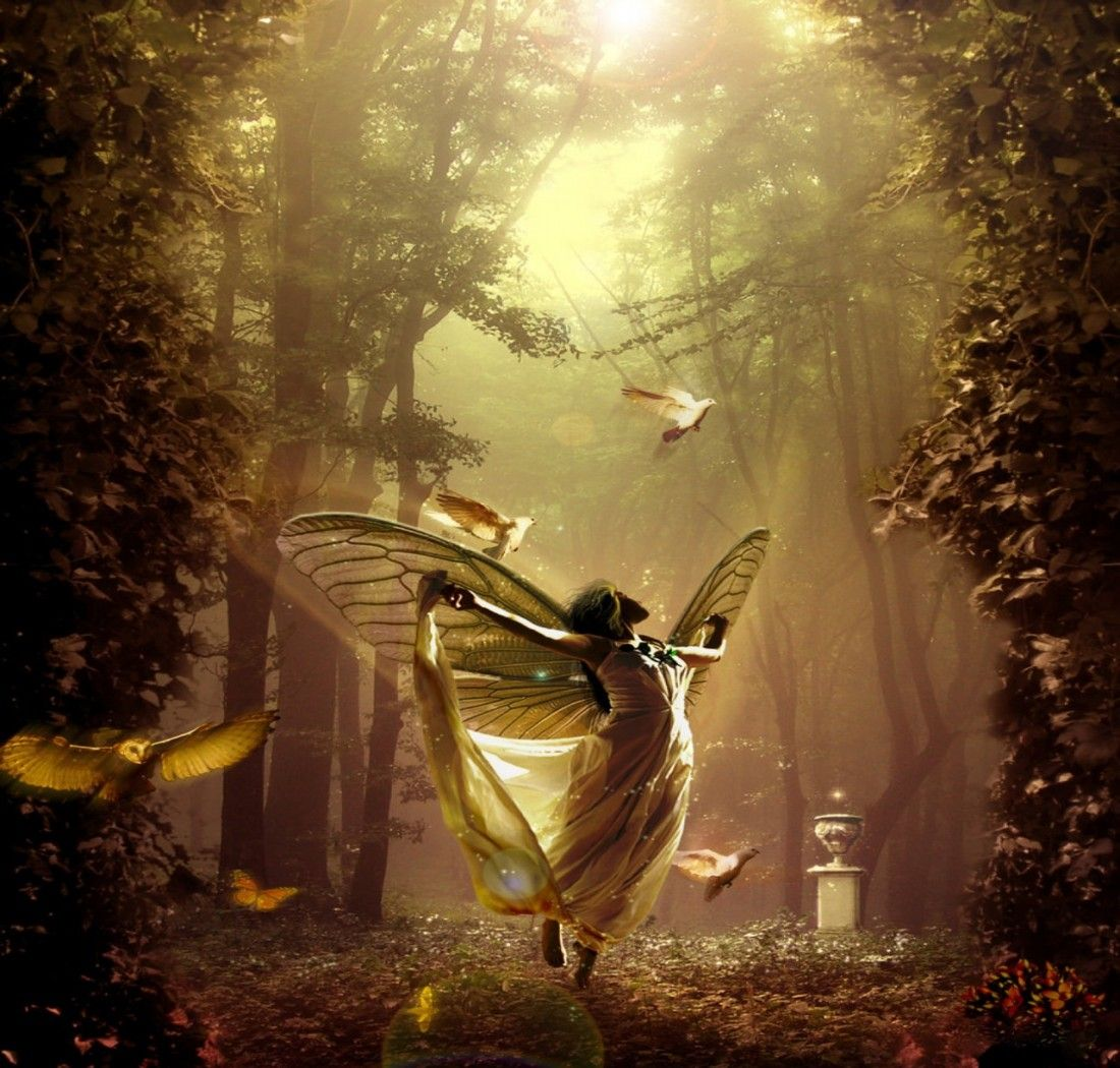 Enchanted Fairy Forest Wallpaper Enchanted Fairy Forest